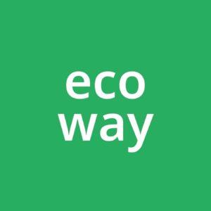 Логотип Кикшеринг Ecoway